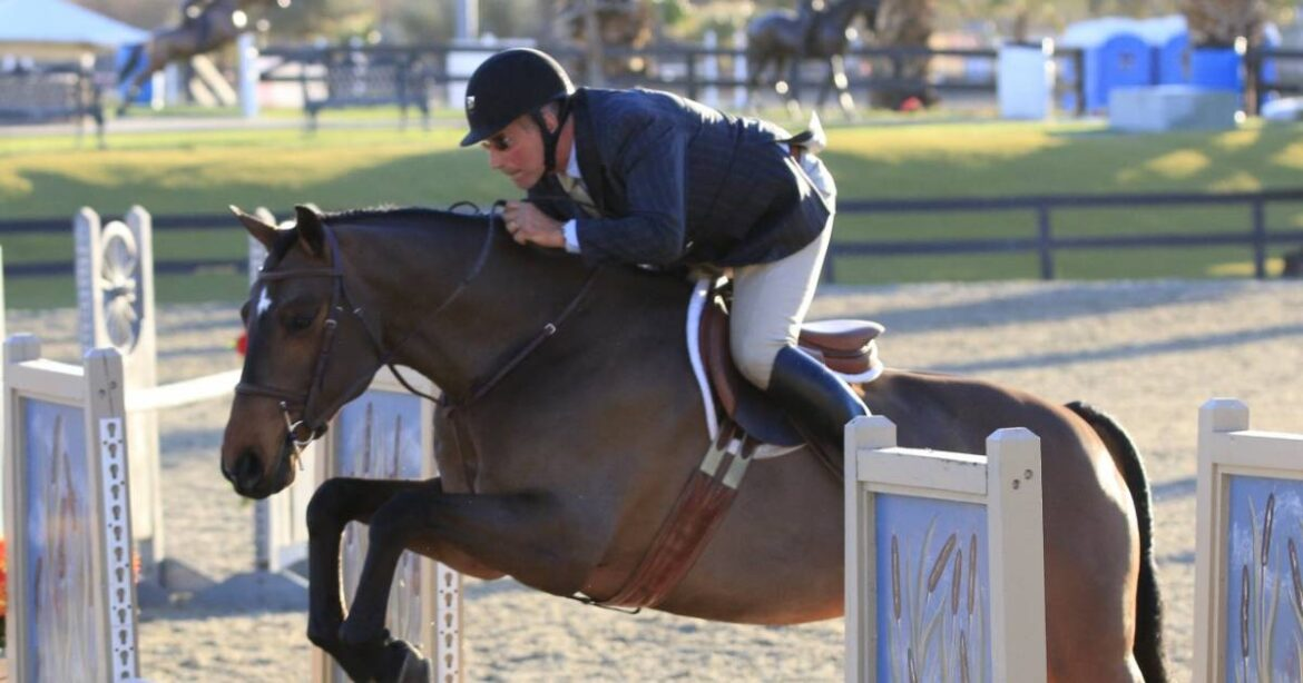The Best Equestrian Specialists in the UK